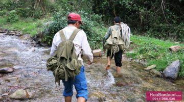 2014 - Săn Mật Ong Rừng - Trip 1 - https://hoabanfood.com/ban-mat-ong-rung