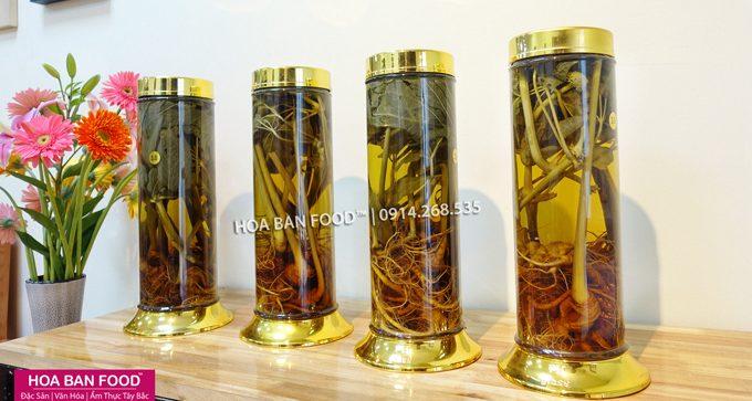 Rượu Ngâm Cây Tam Thất