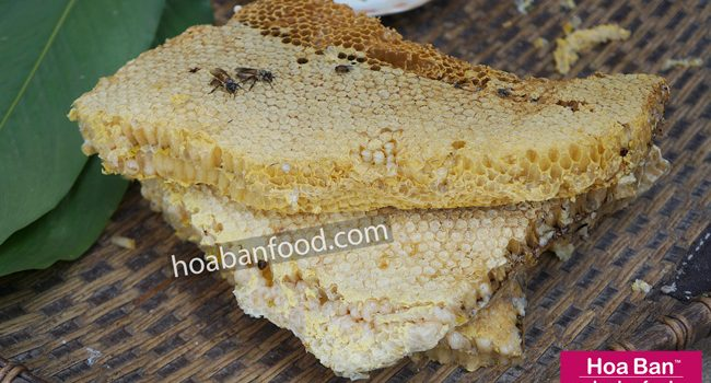 Các món ngon từ Nhộng Ong Non