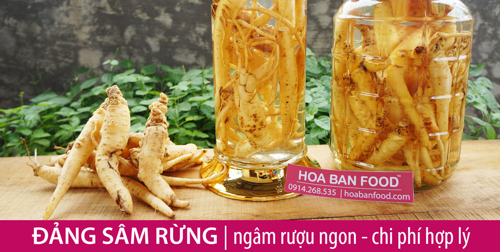 ngam-ruou-dang-sam-banner-ad-2