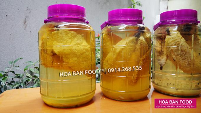 Rượu Ngâm Tổ Ong Ruồi | HOABANFOOD.com